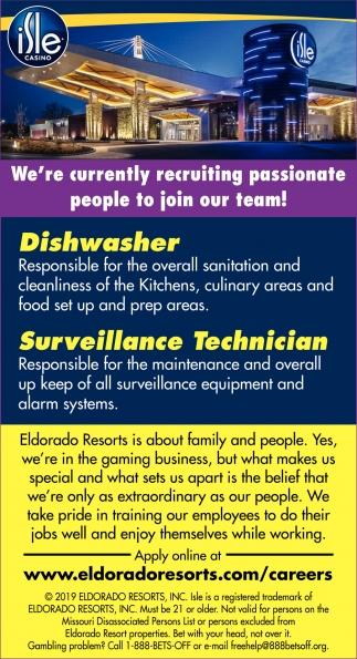 Dishwasher, Surveillance Technician